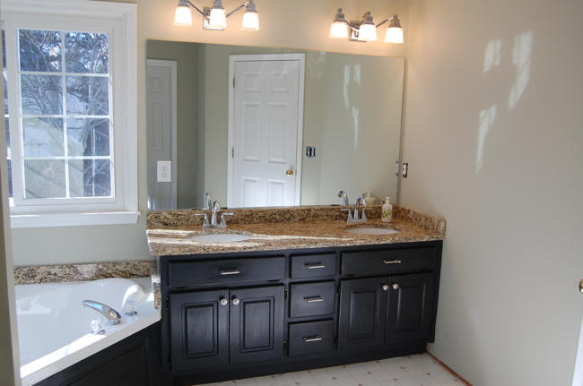 Our master bathroom renovation the bearded iris for Bathroom remodel reno nv
